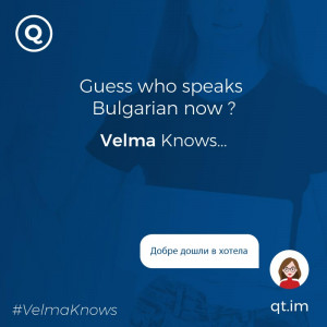 Bulgarian-speaking chatbot for hotels and resorts
