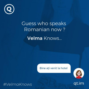 Romanian-speaking chatbot for hotels and resorts