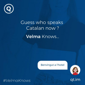 Catalan-speaking chatbot for hotels and resorts